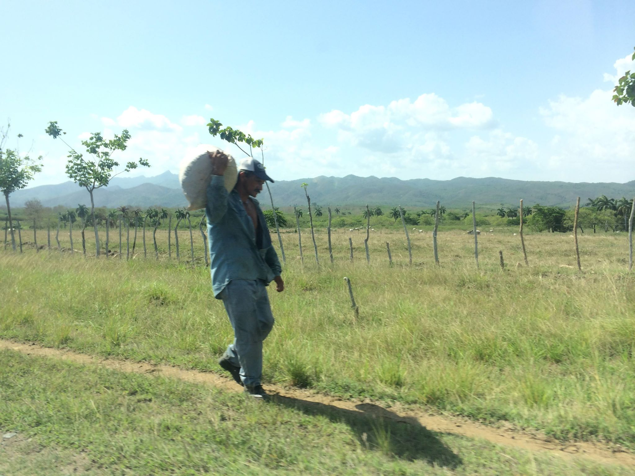 An image of a Cuban carryinga sack home on a dirt path in the Valle de los Ingenios just outside Trinidad, Cuba.